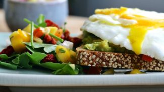 Fried egg on seeded bread with a side salad
