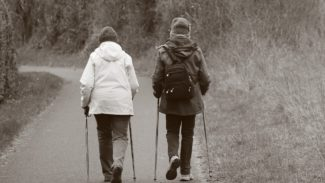 Two people walking in the distance with two walking sticks each